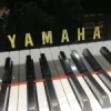 Yamaha Cambridge, Ipswich, Colchester and Norwich areas  - competitive prices on grand and upright yamaha pianos. Yamaha C6 grand piano